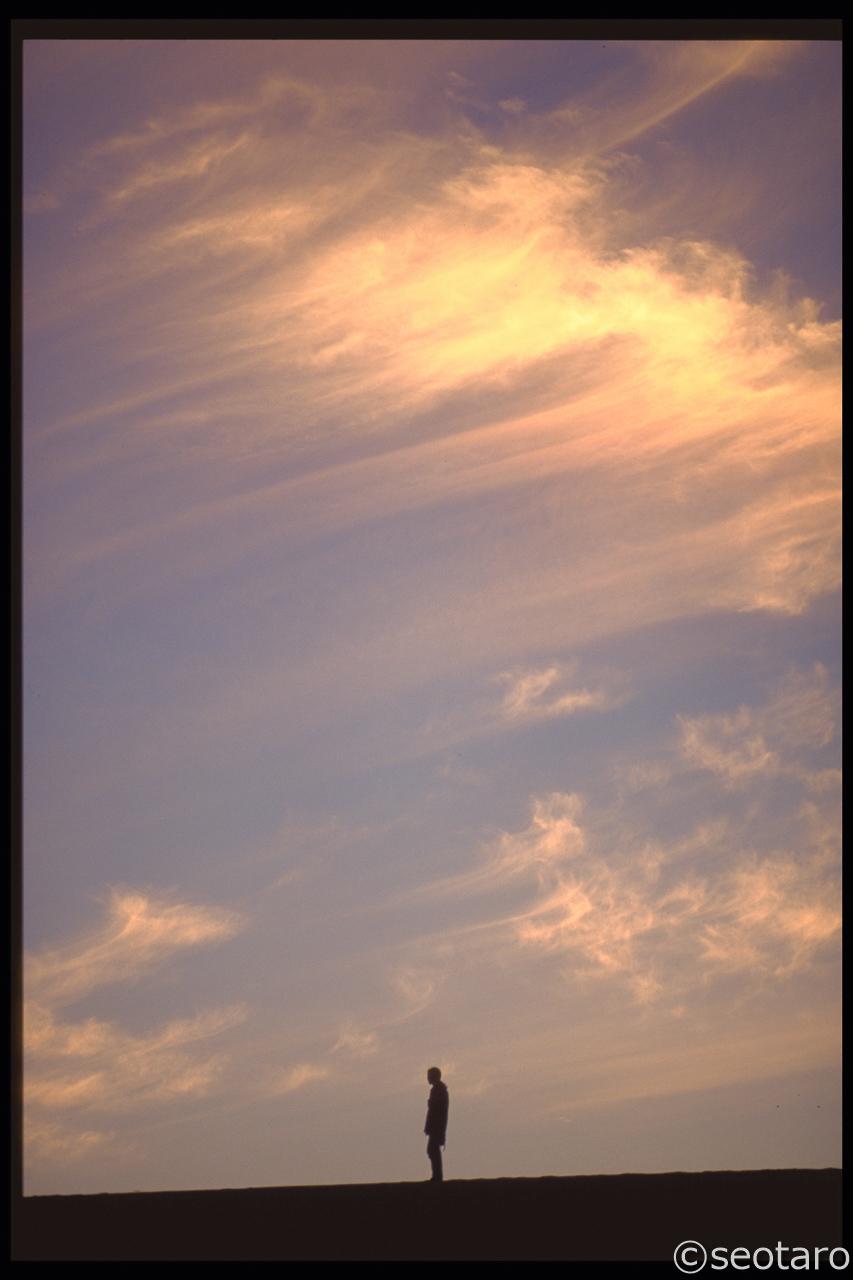 20110120-1280x1280-IMG0003-2
