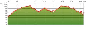 20061125_graph